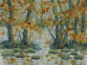 Schwentinebaumherbstbild, Aquarell auf Aquarellpapier, 30 x 40 cm